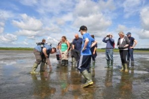 Admiring the zostera (c) Scottish Wildlife Trust