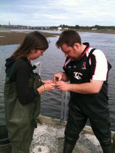 Marianne ringing her first common tern (c) Scott O'Hara, Scottish Wildlife Trust
