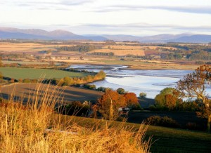 Montrose Basin (c) Scottish Wildlife Trust