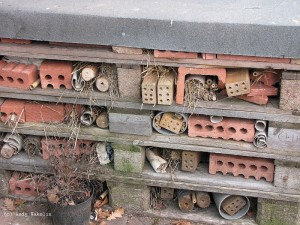 Detailed picture of our Insect Hotel (c) Andy Wakelin