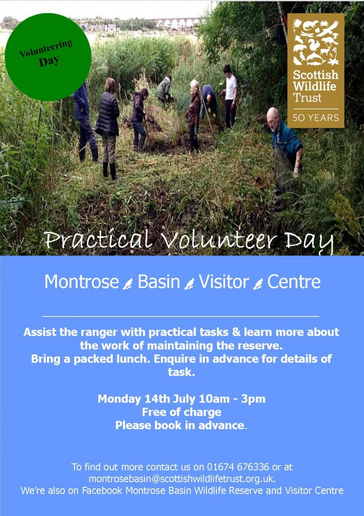 July Practical Volunteer Day (c) SWT