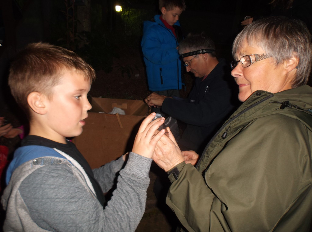 Moth enthusiasts of all ages. (c) Alison O'Hara