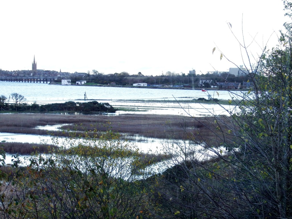 Flooded salt pans and field  (c) Andy Wakelin