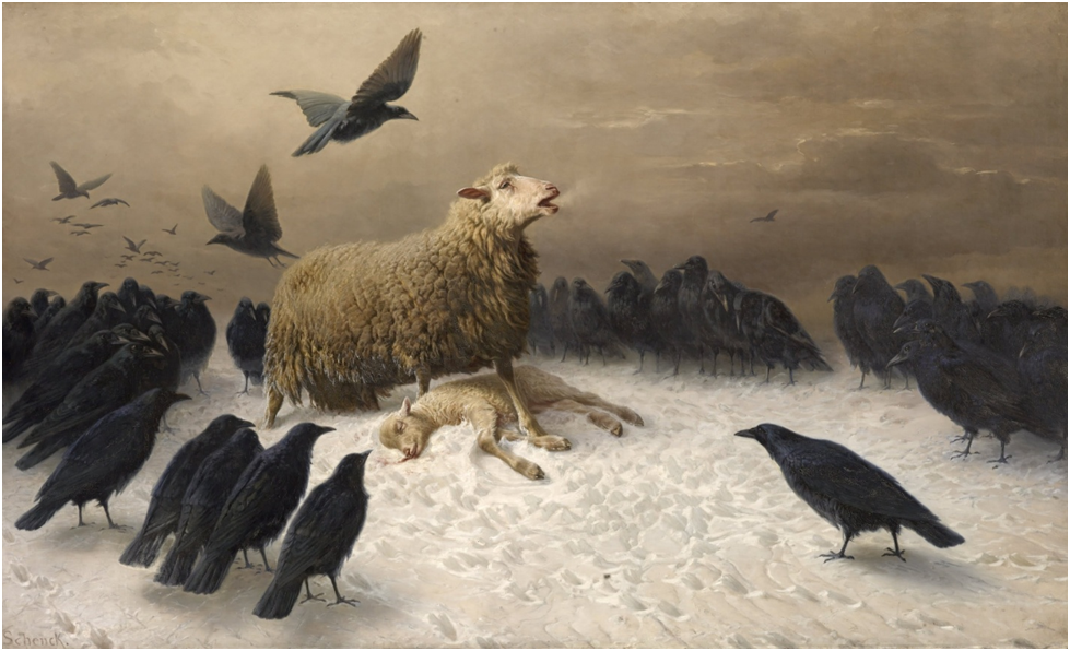 Feast of crows