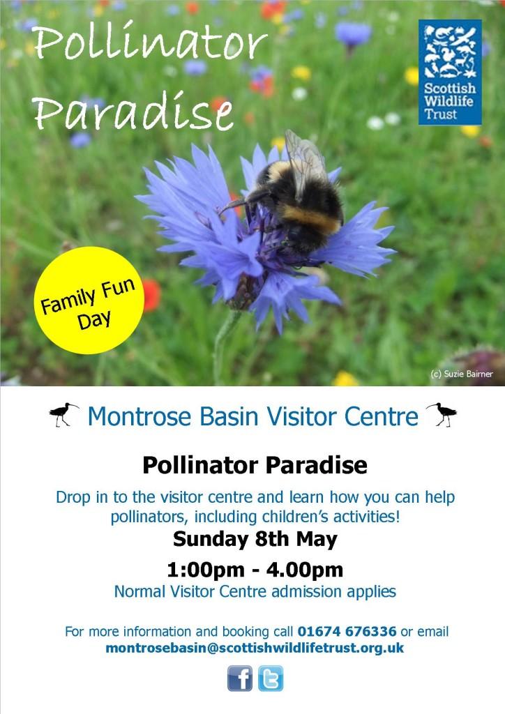 Pollinator Paradise May 2016