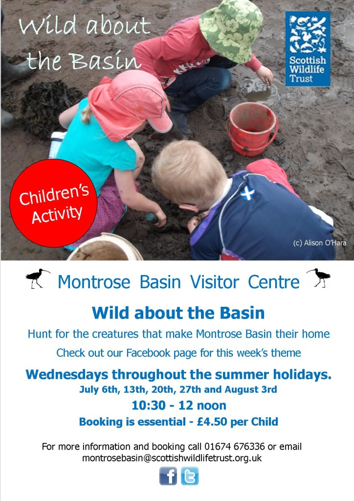 Wild about the Basin summer2016